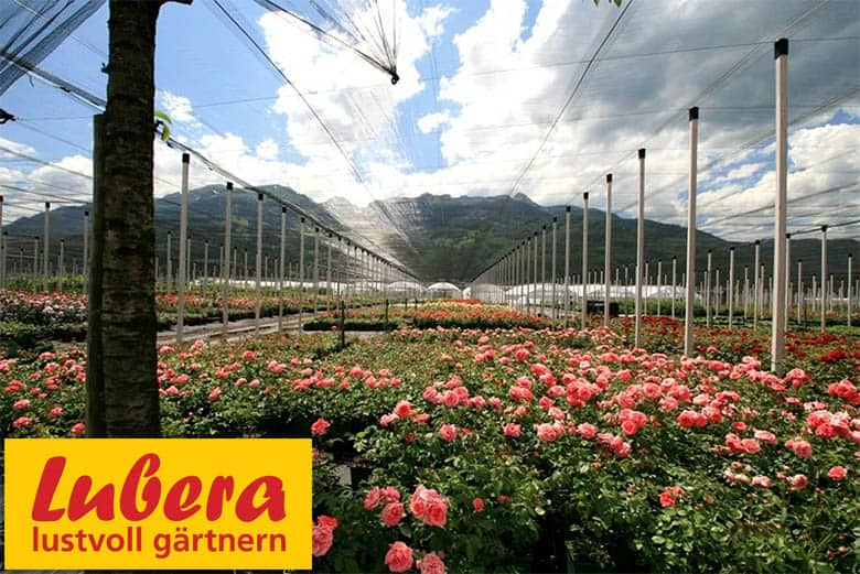 Lubera Gartencenter Online Shop